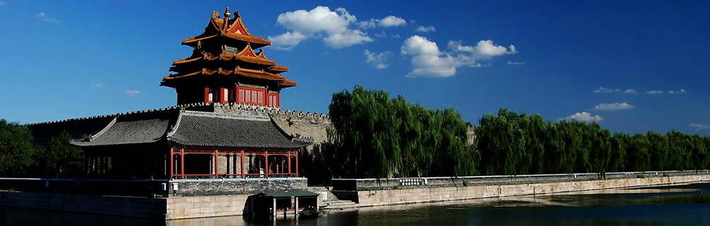 la cité shanghai